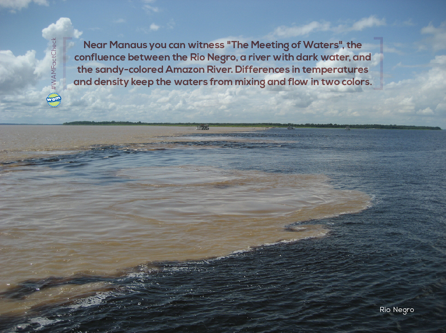 Manaus-3