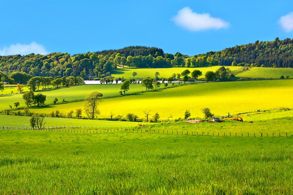 Beautiful, Spring landscape in Scotland