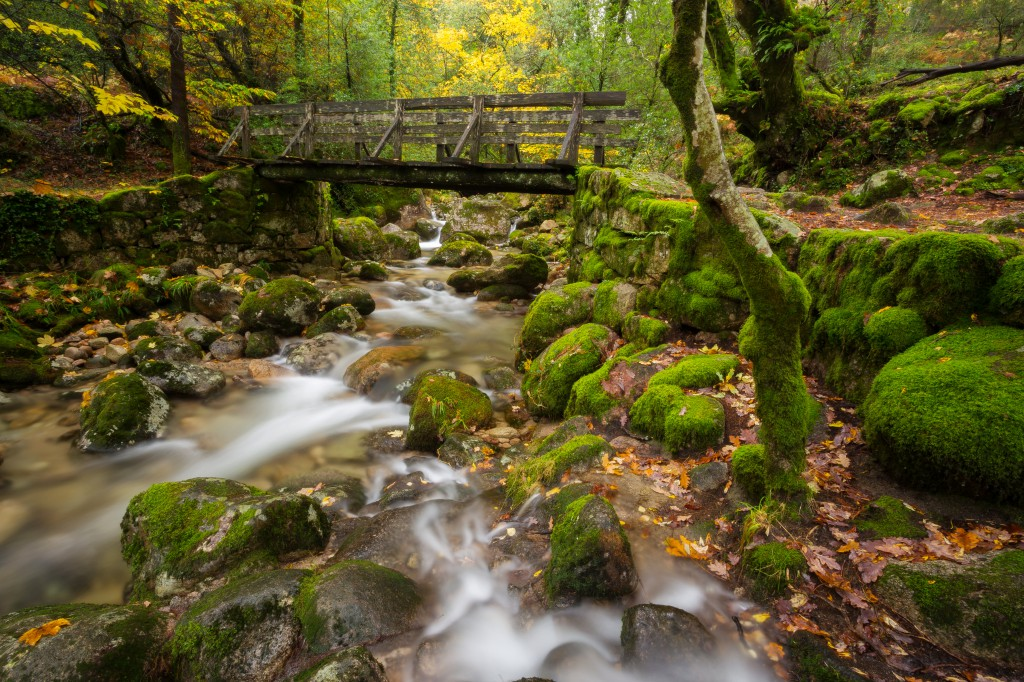 Wood Bridge in Geres National Park, Portugal