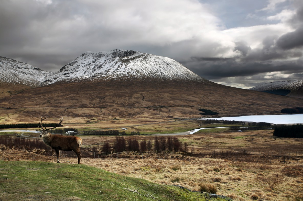 sustainable tourism in scotland Jobs and internships in scotland sponsored by sustainable tourism  tourism scotland 2020 sets out the strategy to increase sustainable tourism.
